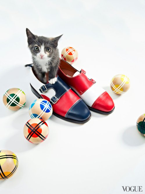 cats-kittens-flats-shoes-21_161905611123